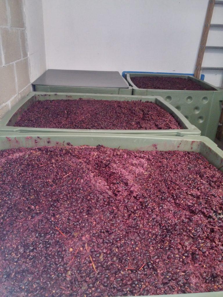 Nierstein Wein Weingut
